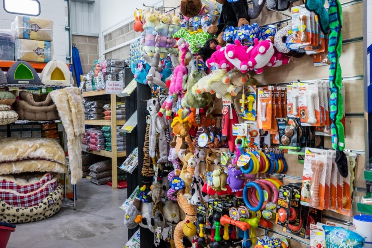 Weymouth-dog-toys