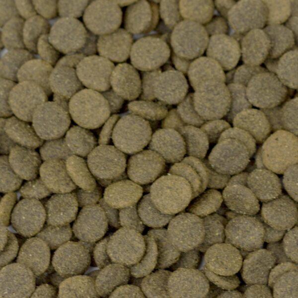 Grain Free Lamb Dog Food