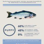 Teepee Grain Free Large Breed Puppy 15kg (Breeder Pack) – Salmon, Sweet Potato & Vegetables