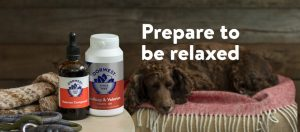 Dorwest Herbs Calming products for anxiety